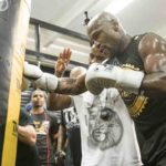 Boxe - Floyd Mayweather contre Logan Paul en combat exhibition