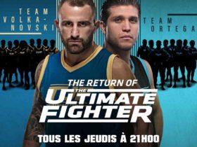 Boxe : Bruno Surace conserve son titre de Champion de France